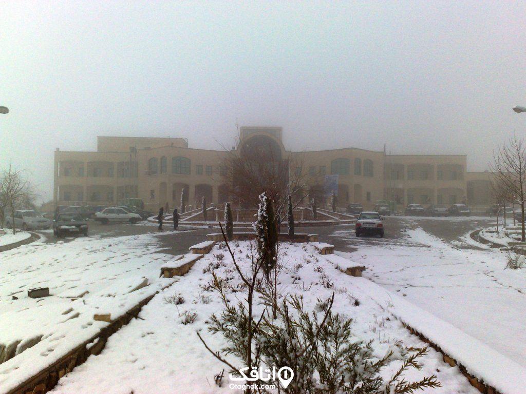 زمستان در شیراز