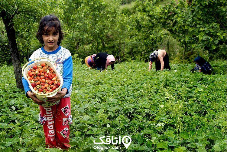 رستم آباد و صنایع دستی آن